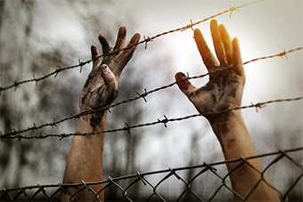 Hands touching barbed wire