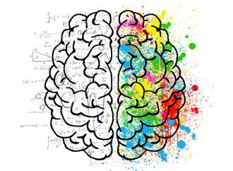 University of Malta Frontiers in Psychology