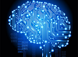 Neural circuit