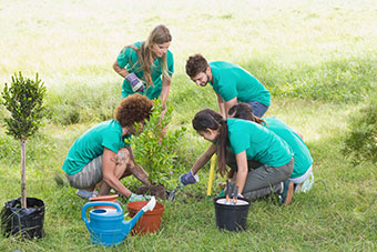 A group of young people planting a tree