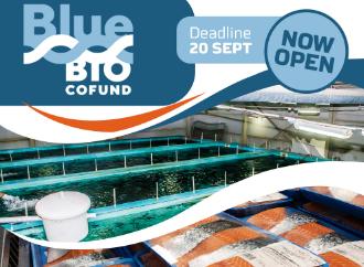bluebio economy