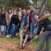 Faculty for Social Wellbeing staff and students planting trees on campus