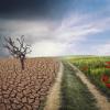 Climate change ECA