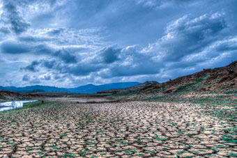 Landscape facing drought