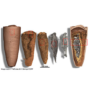 Computer vision techniques to analyse mummies
