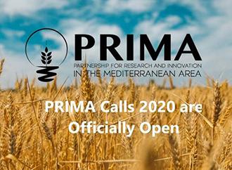 Prima Calls 2020
