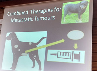ongoing research collaboration in the fields of baldness and cancer immunotherapy for pets