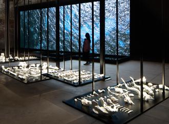 Exhibit - Venice biennale