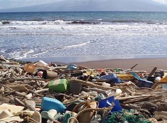 Plastics - Microplastics