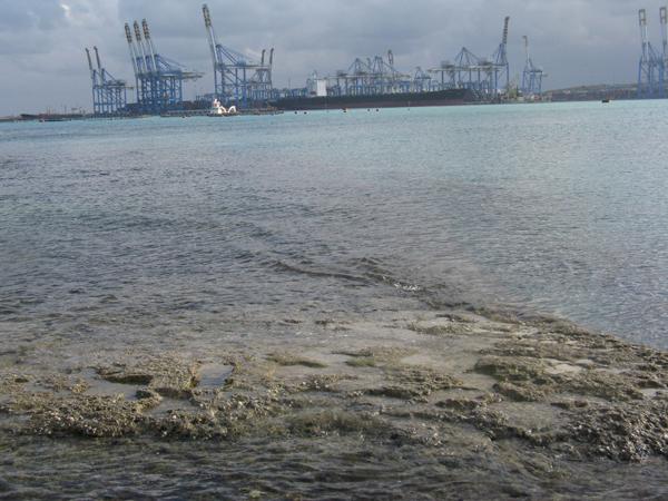 Marine Spatial Planning
