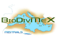 BioDivMex