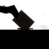 Student remote voting