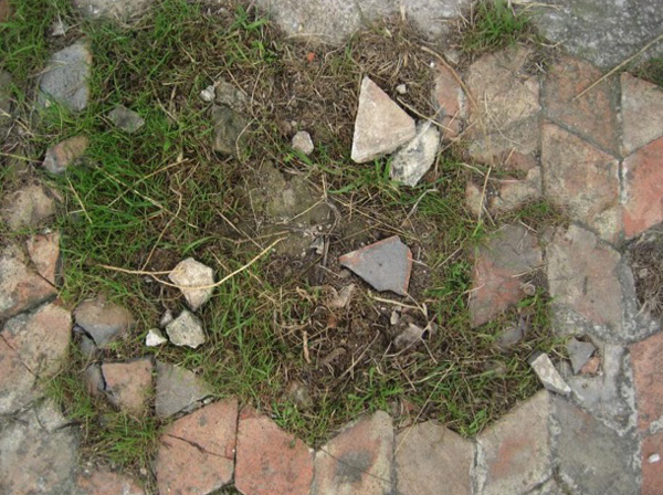 Vegetation growing among the lozenge-shaped tiles - some of which are dislodged and broken
