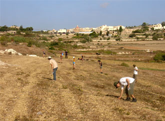 Heritage Malta University of Malta Olea Project Bidnija field