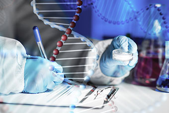 Research in laboratory over DNA molecule structure