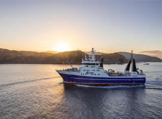 New Zealand Offshore Study